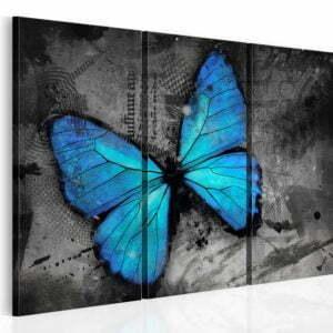 Wandbild - Studie des Schmetterlings - Triptychon