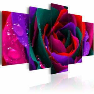 Wandbild - Multicoloured rose