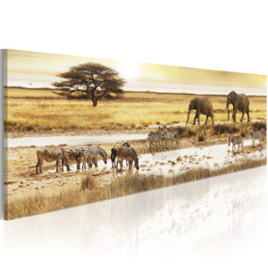 Wandbild - Africa: at the waterhole