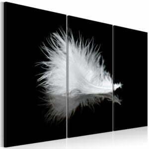 Wandbild - Ein Federchen