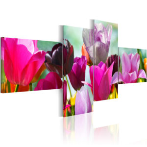 Wandbild - Charme pinker Tulpen