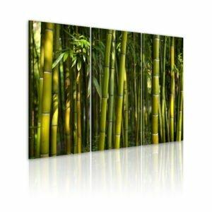 Wandbild - Bambus in Grün