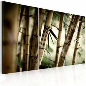 Wandbild - Bambus in den Tropen