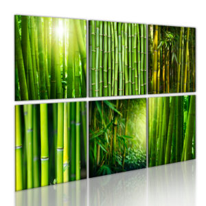 Wandbild - Bambus hat viele Gesichter