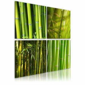 Wandbild - Bambusse