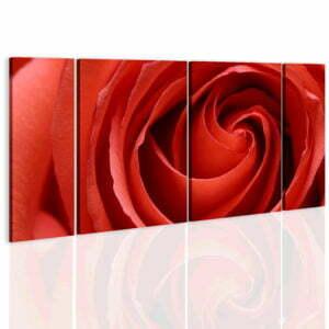 Wandbild - Passionate rose