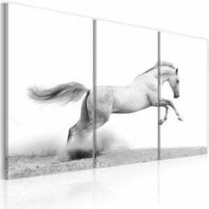 Wandbild - Galoppierendes Pferd