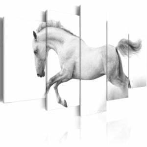 Wandbild - Pferd - Leidenschaft und Freiheit
