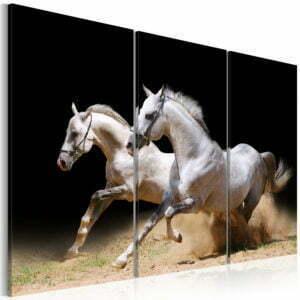 Wandbild - Pferde - Energie und Dynamik