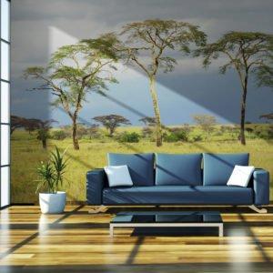 Fototapete - Savanna trees