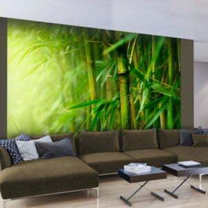 Fototapete - Dschungel - Bambus