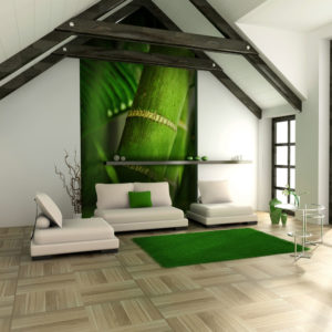 Fototapete - Bambus - Detail