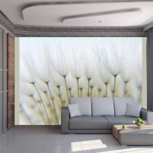 Fototapete - Ein Wald aus Pusteblumen