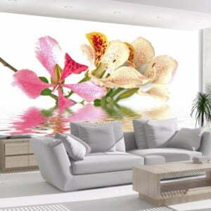 Fototapete - Tropische Blumen (bauhinia)