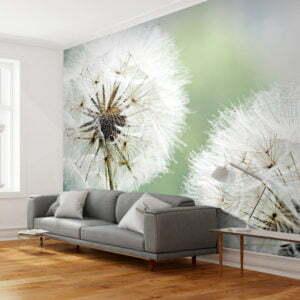 Fototapete - Zwei große Pusteblumen