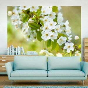 Fototapete - Zweig mit weißen Kirschblüten