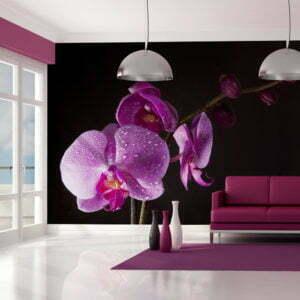 Fototapete - stilvoll  Orchidee