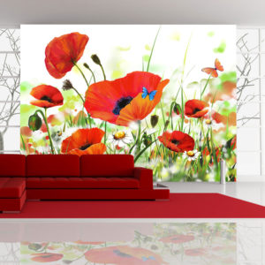 Fototapete - Country poppies