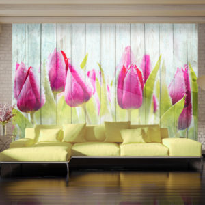 Fototapete - Tulips on white wood