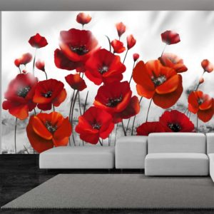 Fototapete - Glowing poppies