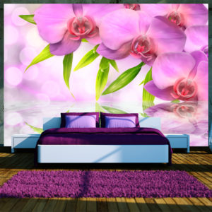 Fototapete - Orchids in lilac colour