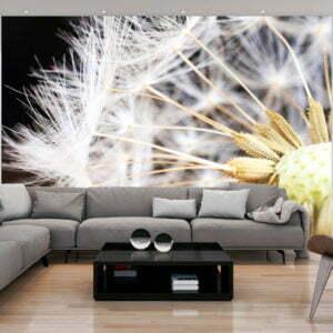 Fototapete - Fluffy dandelion