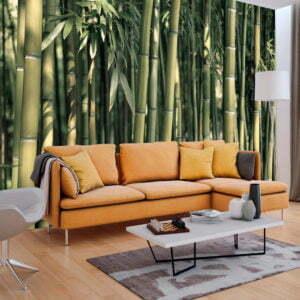 Fototapete - Bamboo Exotic