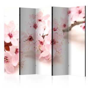 5-teiliges Paravent -  Cherry Blossom II [Room Dividers]