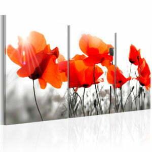 Wandbild - Charming Poppies