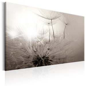 Wandbild - Beautiful Summer: Dandelions