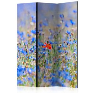 3-teiliges Paravent - A sky-colored meadow - cornflowers [Room Dividers]