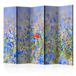 5-teiliges Paravent - A sky-colored meadow - cornflowers [Room Dividers]