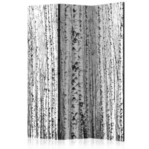 3-teiliges Paravent - Birch forest [Room Dividers]