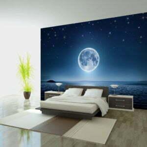 Fototapete - Moonlit night