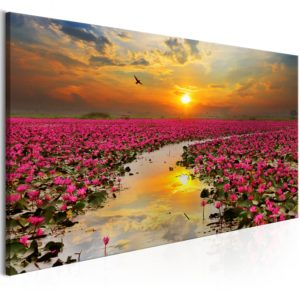 Wandbild - Lily Field (1 Part) Wide