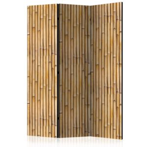 3-teiliges Paravent - Amazonian Wall [Room Dividers]