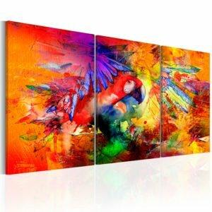Wandbild - Colourful Parrot