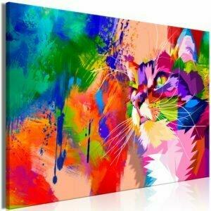 Wandbild - Colourful Cat (1 Part) Wide