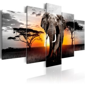 Wandbild - Elephant at Sunset