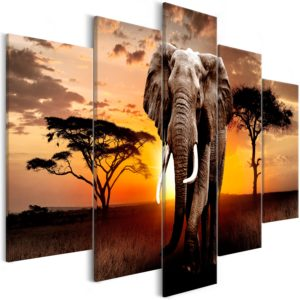 Wandbild - Wandering Elephant (5 Parts) Wide