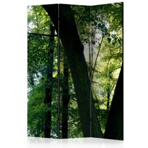 """""""3-teiliges Paravent - Spring in the Park [Room Dividers]"""""""