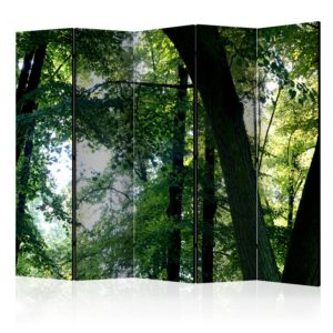 """""""5-teiliges Paravent - Spring in the Park II [Room Dividers]"""""""