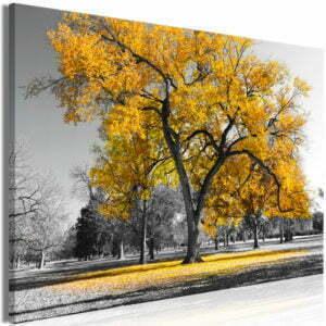 Wandbild - Autumn in the Park (1 Part) Wide Gold