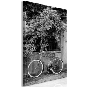 Wandbild - Bicycle and Flowers (1 Part) Vertical